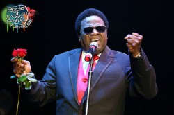 Al Green In Concert - Photo from Memphis In May website